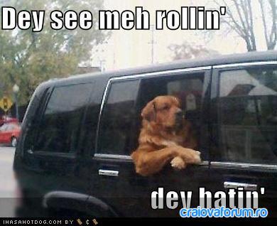 dawg rollin hatin