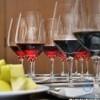 expo vinuri