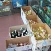 Craiova: Pesticide contrafăcute, confiscate în urma unor...