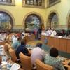 """Craiova: Consiliul Local numit """"Caricatură"""""""