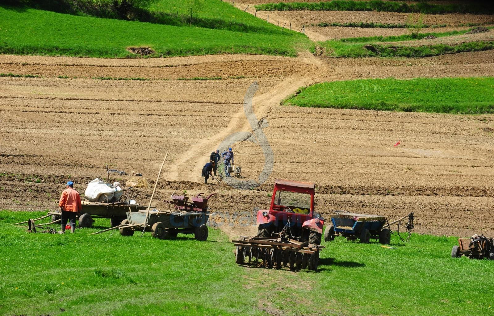 teren agricol fermieri apia